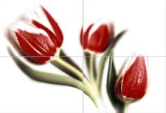 Tulips P4 панно из 4-х плиток 728 х 498 1973руб шт