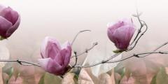 1dekor_magnolija_2_rozovyi500250